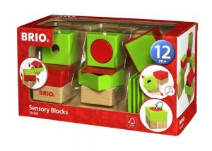 brio sensory blocks boxed